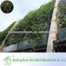 10 cm Mesh Öffnung Edelstahl Pflanze Climb Wall Mesh
