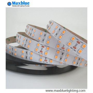 SMD2835 144LEDs / M Double rayon LED Strip Light