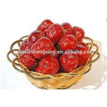 Jujube chinês vermelho fecha fruta jujuba