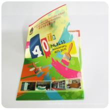 Custom plastic PP A4 file holder (pockets file folder)