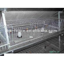 Cage de pigeon pas cher / cages de poulet / cages de volaille
