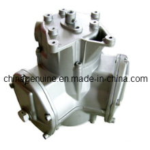 Zcheng Medidor de flujo grande Zcm-100