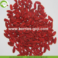 Grosir Pabrik Natural Top Quality Wolfberry