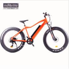 Elektrisches Fahrrad 48V1000W Heißer Verkauf elektrisches fetter Fahrrad mit Mittelmotor des Antriebs 8fun