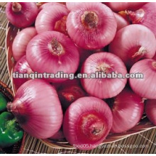 chinese fresh yellow red onion