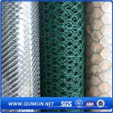 Alta qualidade verde PVC revestido Hexagonal Wire Mesh