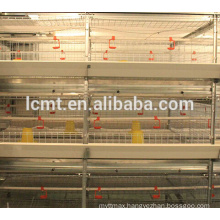 poultry farming equipments doe baby broilers