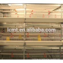 equipamentos de avicultura, doe frangos de corte