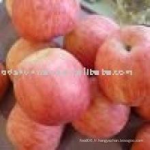 Fournir une pomme chinoise de fuji avec une qualité élevée