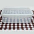 BPA Free eco friendly plastic shipping box