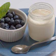 Yogur sano probiótico con grasa