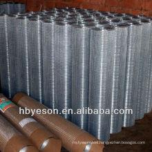 hardware cloth / galvanized welded fence / galvanized hardware netting