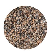 Preço de trigo mourisco doce cru de alta qualidade