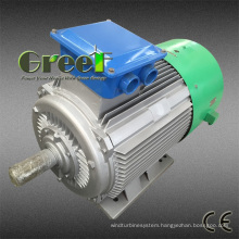 Low Speed Sychronous Permanent Magnet Generator for Sales