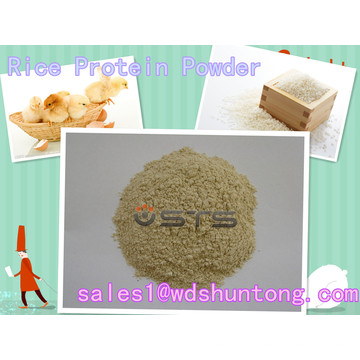 Proteína de Arroz em Pó com Alta Qualidade