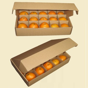 Fresh Fruit Corrugated Outer Carton Box