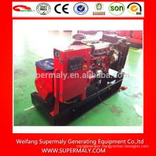 Most popular generator set diesel 8 kw