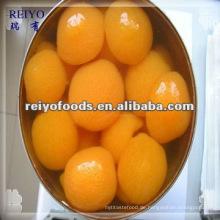 Obstkonserven - Aprikose in leichtem Sirup