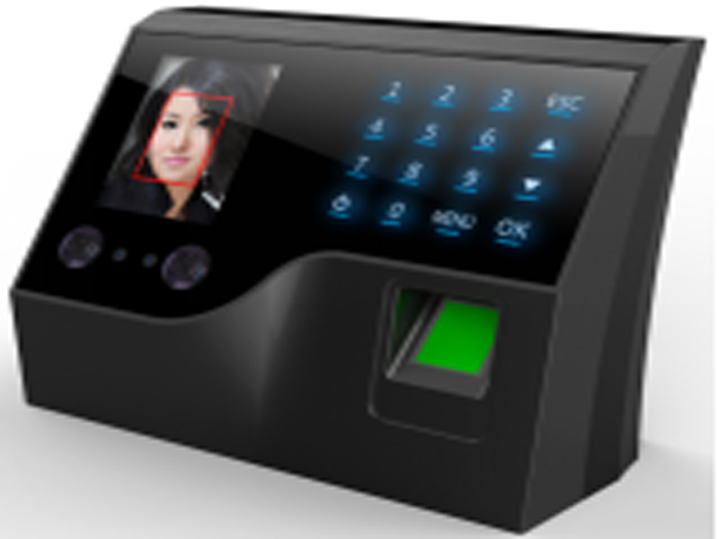 All-network Link Connections Attendance Machine