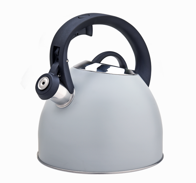 Stainless Steel Whistling Tea Kettle Fh 469