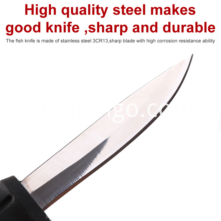 Fillet Knife Steel