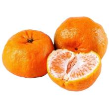 Natural High-Quality Sweet And Juicy Fresh Citrus Navel Orange