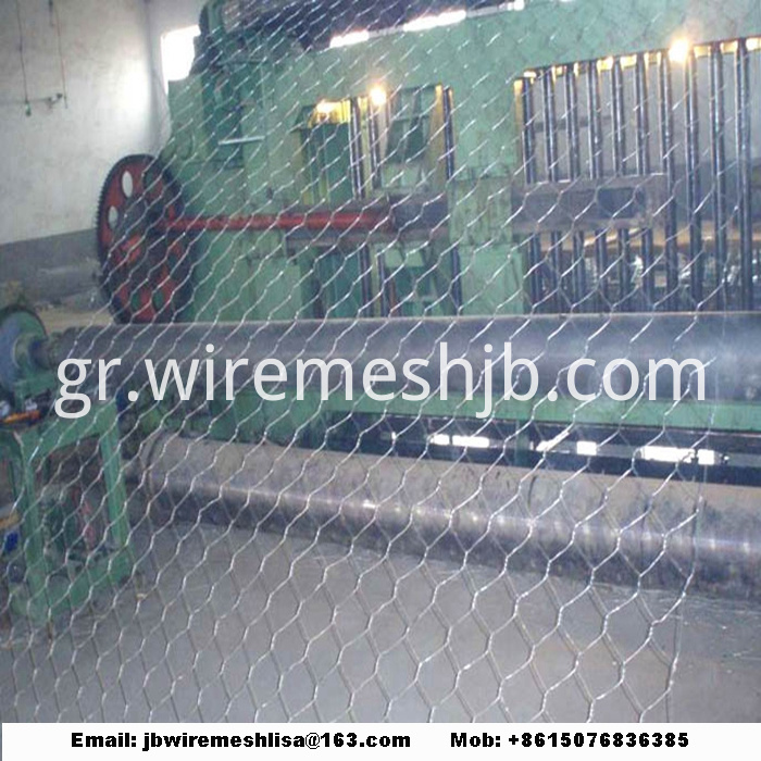 Galvanized Hexagonal Wire Netting