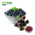 Acai Berry Extract Freeze Suszony proszek