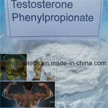 Testostérone de Phenylpropionate de poudre de testostérone de Phenylpropionate de test blanc