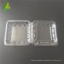biodegradable plastic fruit packaging