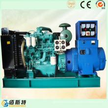 Conjunto de generador diesel Ricardo del precio bajo 40kw / 50kVA