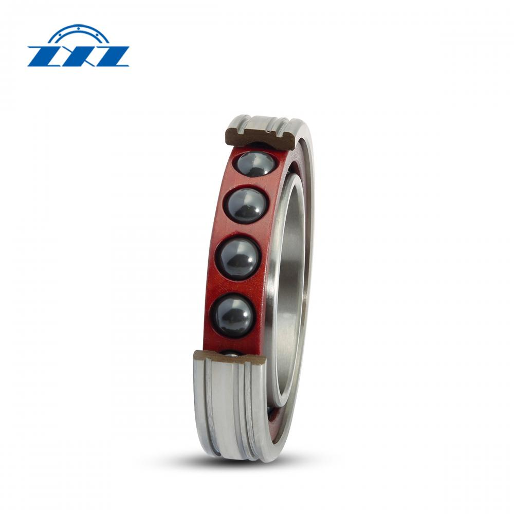 Ceramic Rolling Element Bearings
