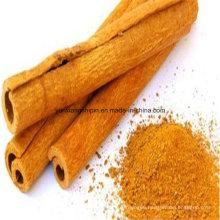 Best Factory Price Cinnamon Cassia, Cassia Whole, Broken, Powder