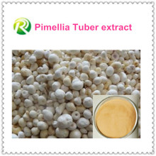 Hot Sale 100% Natual Pimellia Tuber Extract