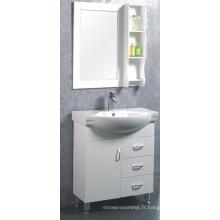 Meubles simples de Cabinet de salle de bains de forces de défense principale (C-6303)