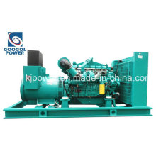 280kw USA Googol Electric Generator with Silent Canopy