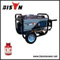 Bison China Zhejiang AVR para Gerador Soldador Gas Powered Motor Gerador 5KW cabeça
