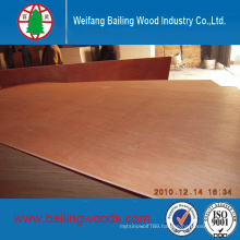 3mm/15mm/18mm Bintangor Face/Back Plywood with Poplar Core