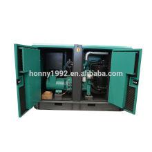 25kW diesel generador pequeño 220V para la venta