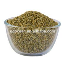 Alta qualidade verde vassoura milho painço, bajra verde milheto para venda com preço razoável e entrega rápida !!