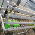 PVC Vertical Nft Indoor hydroponic growing systems