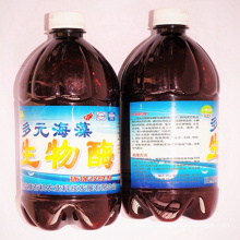 Seaweed Microorganism Agent for Control City Pollution