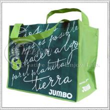 PP Non Woven Shopping Bag (KG-NB018)