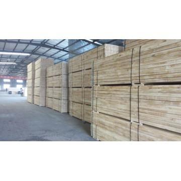 Poplar folheado laminado de madeira para construção