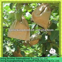 Manzana fuji en bolsas de papel