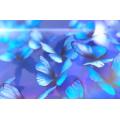 Pó de cor azul da borboleta BlueMorpho para unha polonês Batom de sombra para os olhos e flâmula de tinta do carro