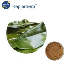 Seaweed extract factory supply