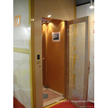 Made in China Elevator Manufactures Supplier Villa /Residential / Home /Passenger Lift Elevator/Parts (FJ3000-1)