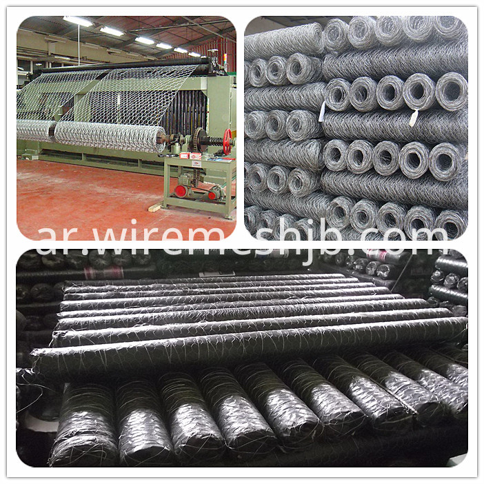 Galvanized Wire Netting