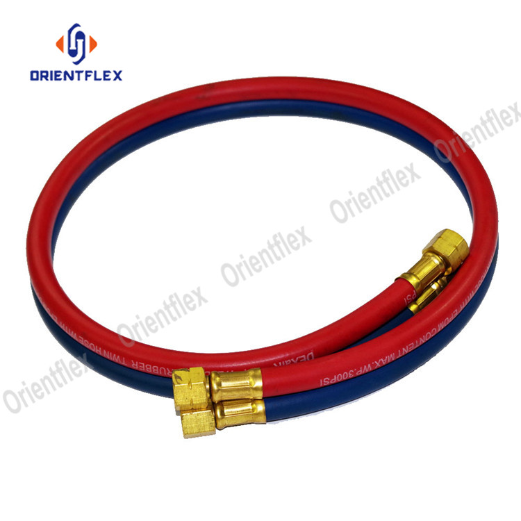 Twin Welding Hose 10